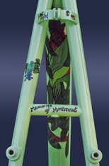 rainforest artist signature leni fried custom bicycle art